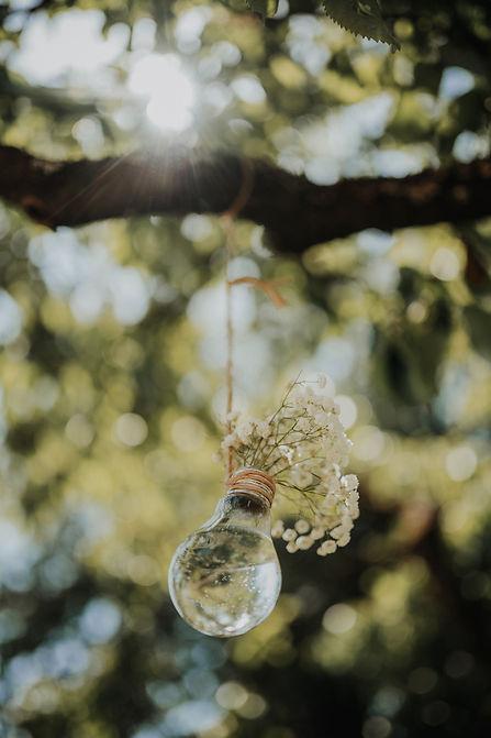 Vaza žarnica