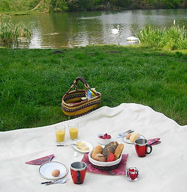 Picknick-am-See.jpg