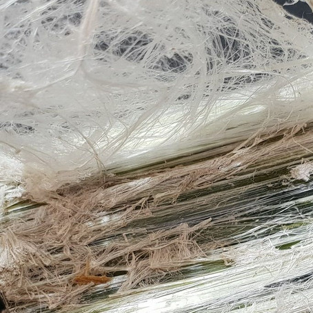Segment: What is Asbestos?