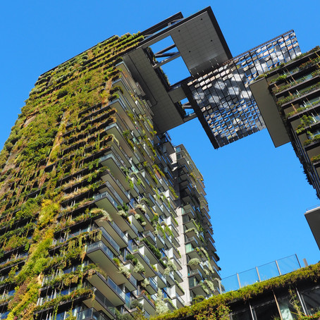 Thoughts on a Sustainable Built Environment