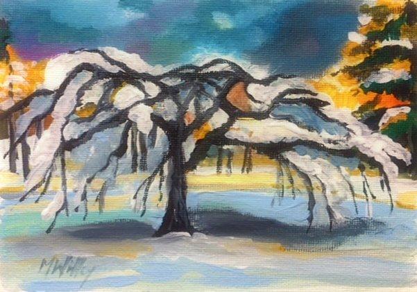 """Camperdown in snow"""
