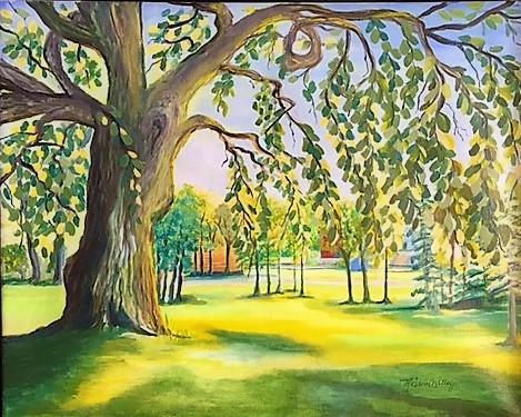"""Magic Camperdown Elm Tree"""