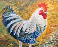 """""""Freedom Rooster"""""""