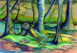 Hermit Crab Island 5 x 7 Color Pencil