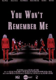 You Won't Remember Me .jpg