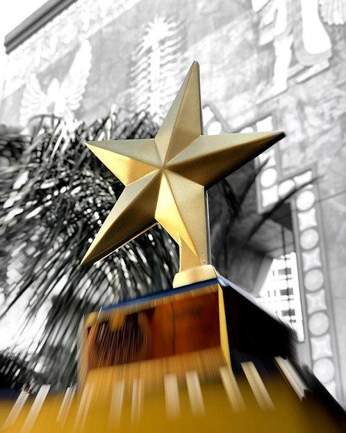 copy of An Official GFFA Golden Star statuette.