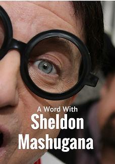 School of Idiots by Sheldon Mashugana .j