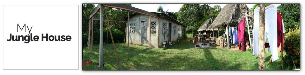 My Jungle House1.jpg