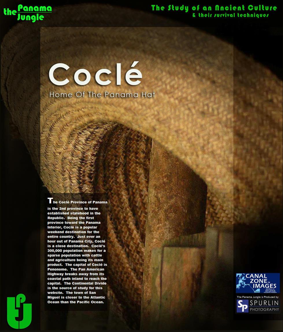 cocle 1-0001.jpg