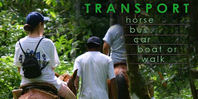 Cocle Jungle Transportation