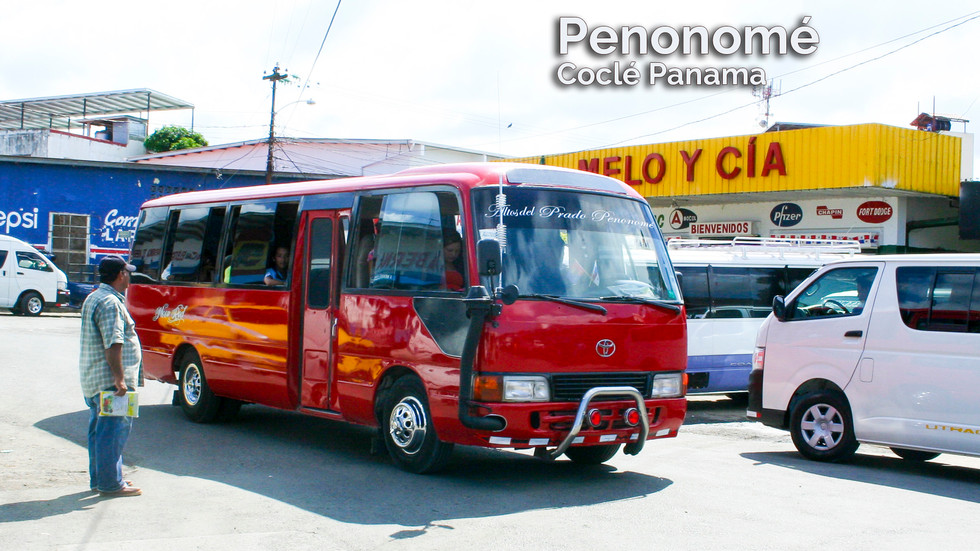 PalMar43.jpg