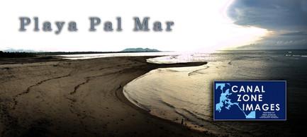 PalMar06 copy.jpg