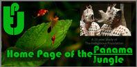 TPJ home page.jpg