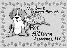 Member & Insured
