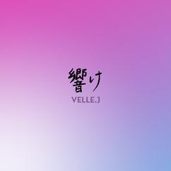 Digital Release『 響け 』(2020年4作連続配信リリース 第4弾)