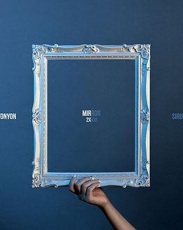 0 mirror cover.jpg