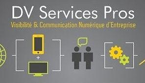 DV Services Pros