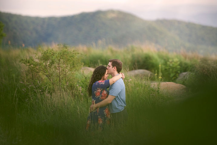 Engagement+at+Bear+Mountain+State+Park+N