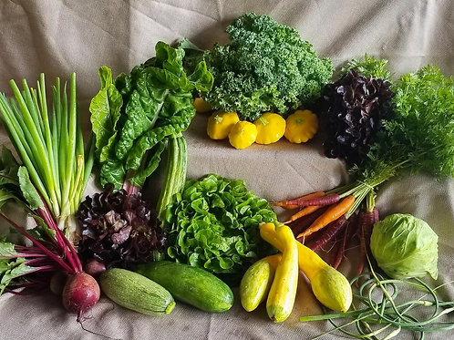 Full Share w/ On-farm Pickup, CSA Session 1