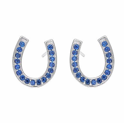 Örhängen Blue Silver Crystal Horseshoe