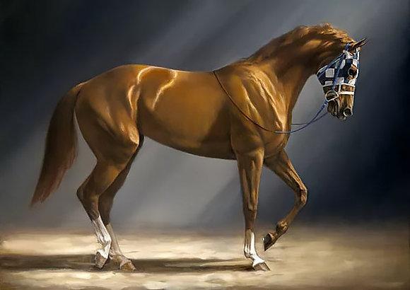 Diamond Painting Race Horse