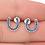 Thumbnail: Örhängen Blue Silver Crystal Horseshoe