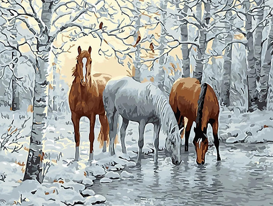 Paint by Numbers Horses
