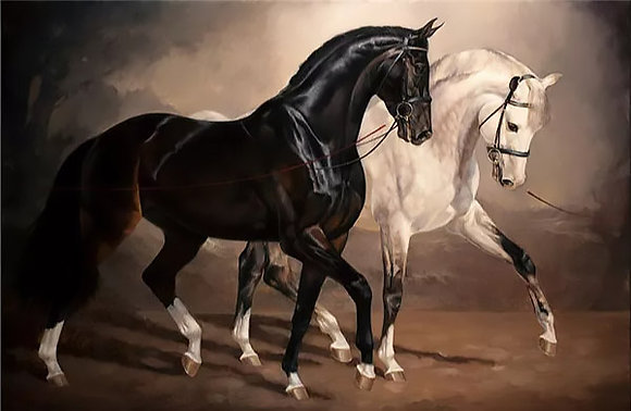 Diamond Painting Horses