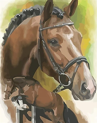 Paint by Numbers Showjumper