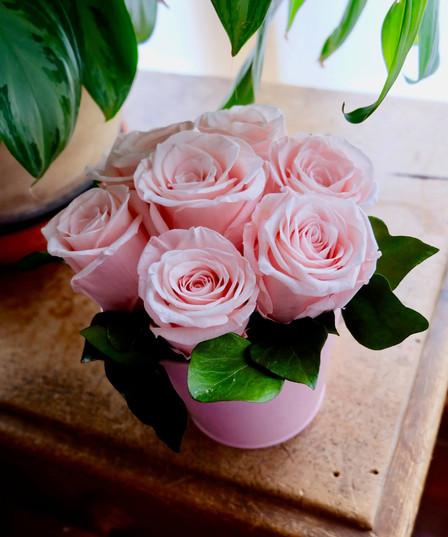 Bubblegum Rose Pot