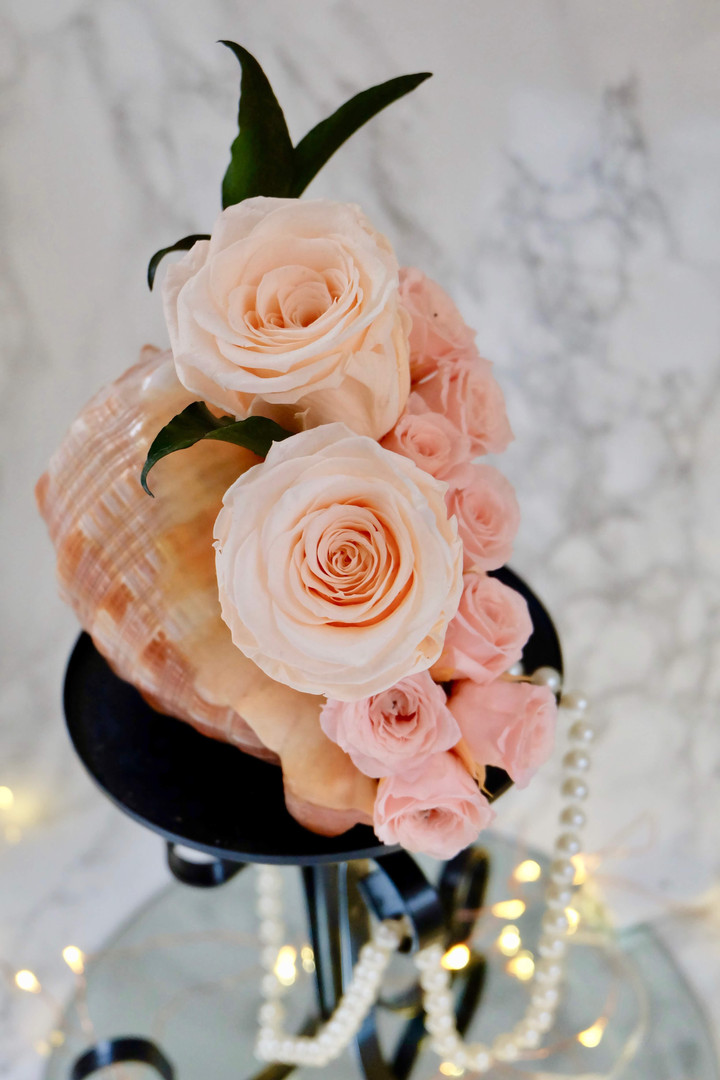 Shell Themed Rose Display