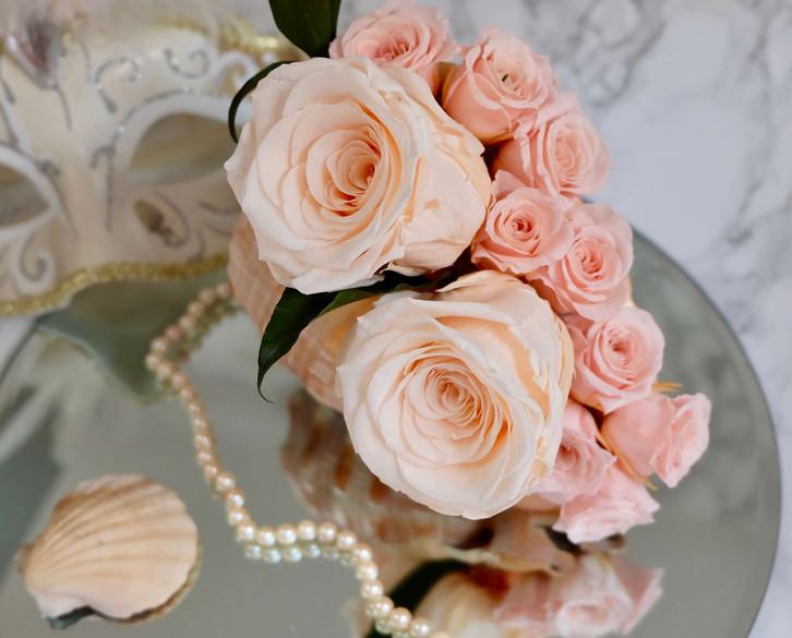 Eternal Rose Shells