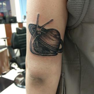 Cool Snail Tattoo
