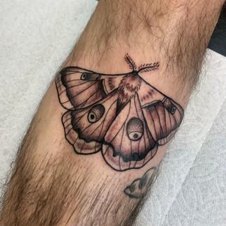 Soft moth tattoo