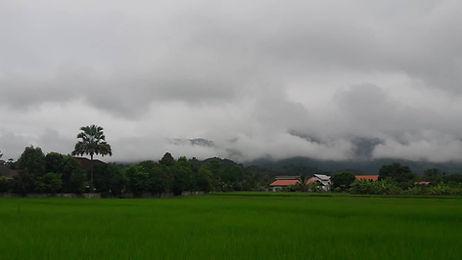 Chiang Rai Hillside