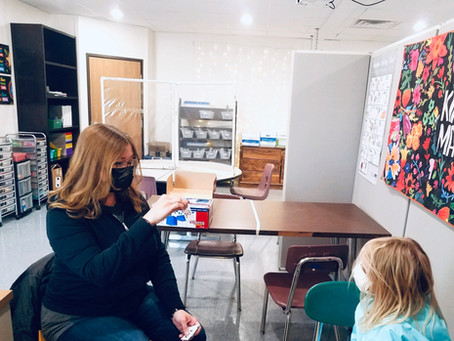 FernLeaf's Intervention Program: Targeted small group instruction for at risk students