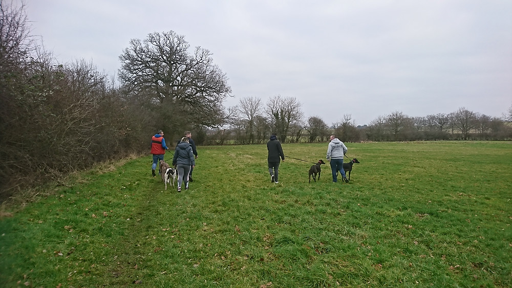 Kennel visit from sunday 14th