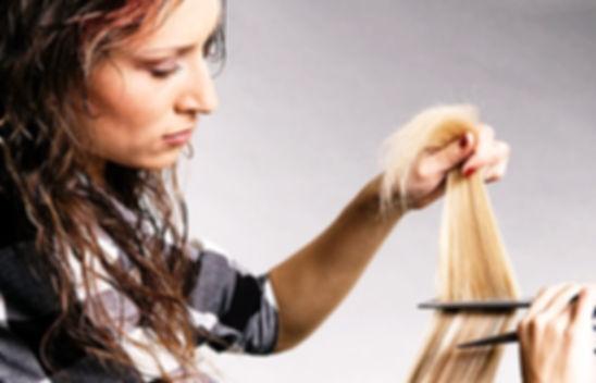 Dial a stylist toronto employment