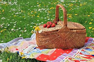 picnic-basket-1.jpg