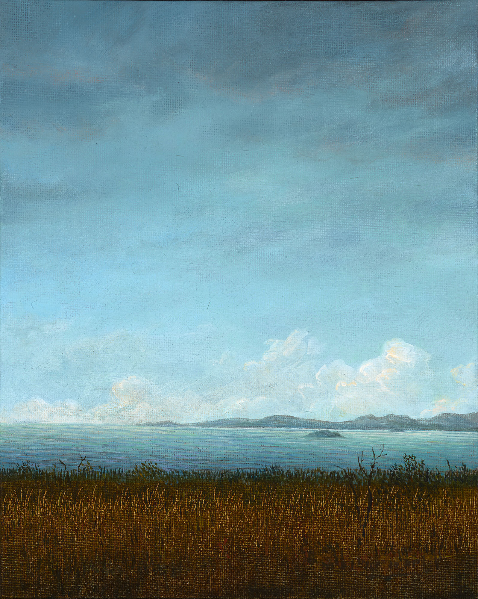 Corner Inlet No 2 275 x 228mm oil on panel 2015