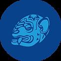 Jaguar Hostal