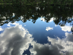 Reflections of the Sky