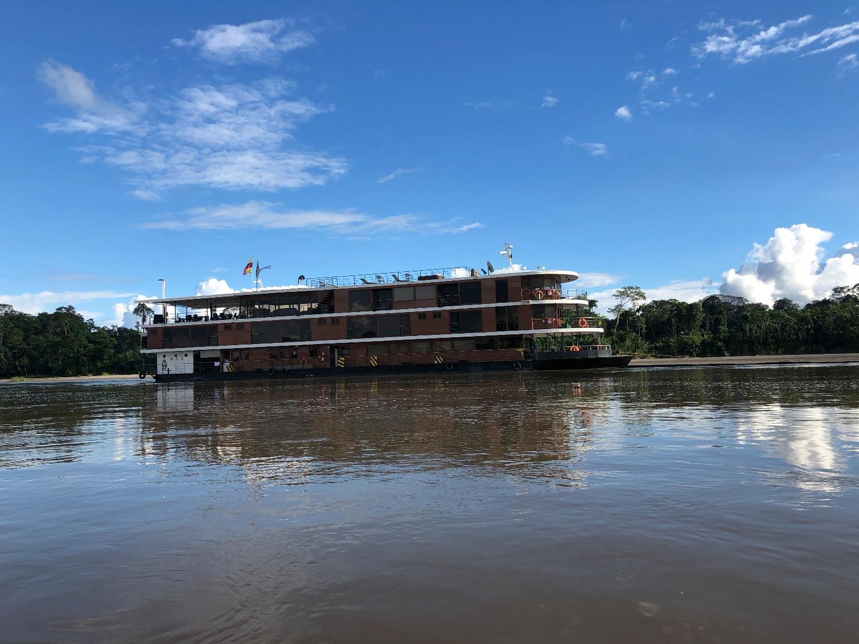 Anakonda, Napo River, Ecuador