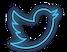 Neon twitter.png