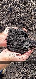 compostedpinebark.jpg