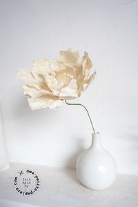 fleur-mum-blanc (6).jpg