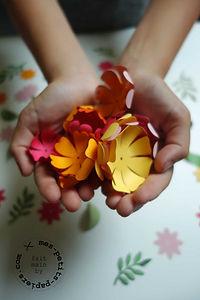 mes-petits-papiers-fleurs-anniversaire-5.jpg