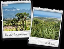Location de Gîtes et Chambres meublées à l'île de la Réunion.