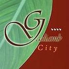 gadiamb city.jpg