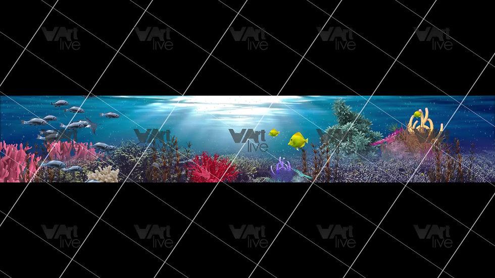 Aquarium Fish Seabed Loop - VA-3H-0112
